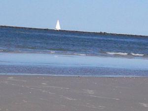 Ocean & Sailboat