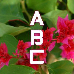ABC Challenge