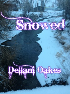 snowed-cover-4
